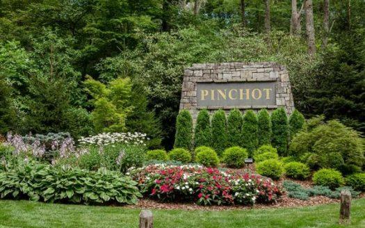 Pinchot