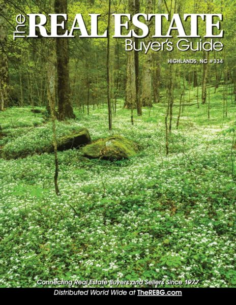 The Buyers Guide Issue 1 2017
