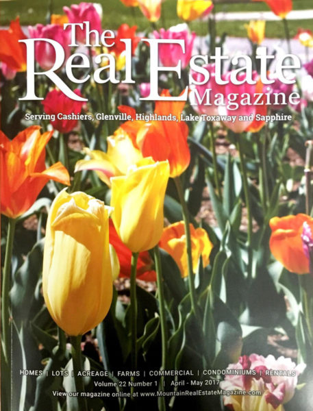 The Real Estate Magazine Issue 1 2017
