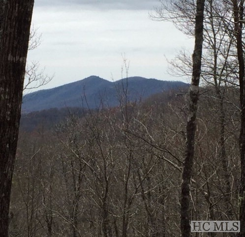 Lot 29 Continental Drive Sapphire NC - The Divide at Bald Rock