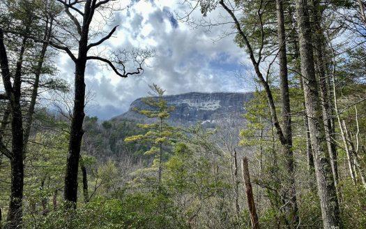 337 Peregrine Trail