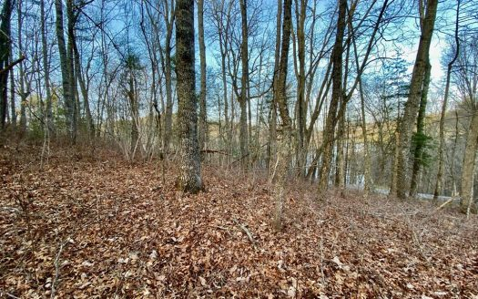 Lot 25 Tahala Trail