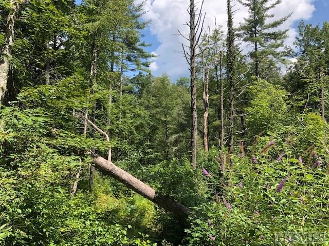 TBD Cherokee Trail